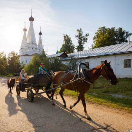 Алексеевский Монастырь фотограф Илья Гарбузов